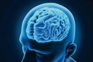 Daño Cerebral Adquirido