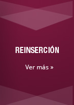 pilar_reinsercion